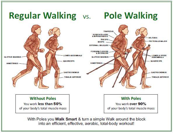 Pole Walking Graphic