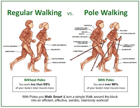 Pole Walking Graphic